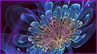 A Digital Flower