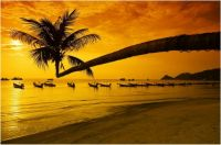 Thailand yellow beach sunset