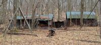 sheds in the woods