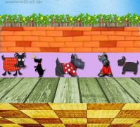 scottie dogs