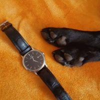 Dog - Watch