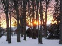 Sunset January 1 2011