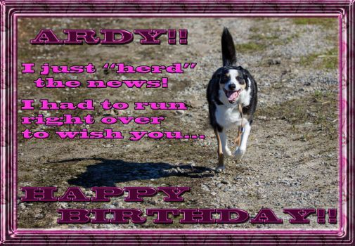 Happy Birthday, (ringleader) Ardy!