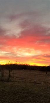 Kansas Sunset Fall 2020