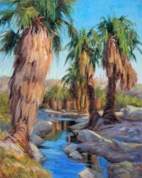 Desert Palm Canyon