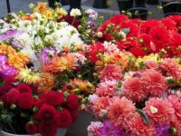 Bouquets of beauty for everyone, enjoy!