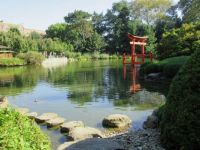 The peaceful Japanese Garden