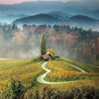 Heart Road in Slovenia