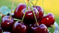cherry_fruits
