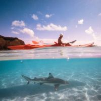 Kayaking with sharks in French Polynesia