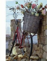 blooming... bicycle..