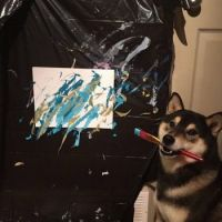 Canine Picasso
