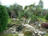 část zahrady