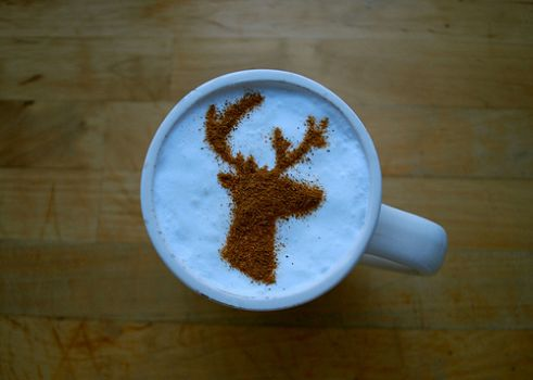 Moose Coffee