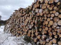 Winter Logging