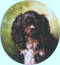 Toy Spaniel, 1864 by Benno Adam
