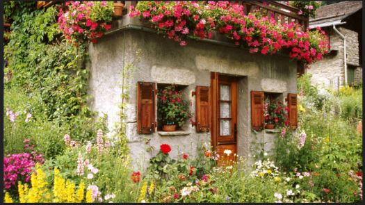 pretty cottage with flowers all around!!!