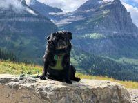 Clara at Glacier NP Montana