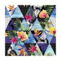 TROPICAL TRIANGLES