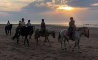 paarden en ruiters aan zee
