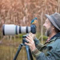 1 ~ 'Take a Picture not a Trophy' (Kingfisher)