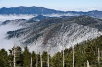 Great Smokey Mtns seeing Mount Collins, Sugarland Mountain, and Mount Le Conte