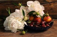 Still Life ~ Peonies and Cherries