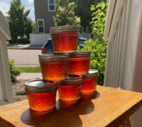 TIncup's Legendary Apple Jelly