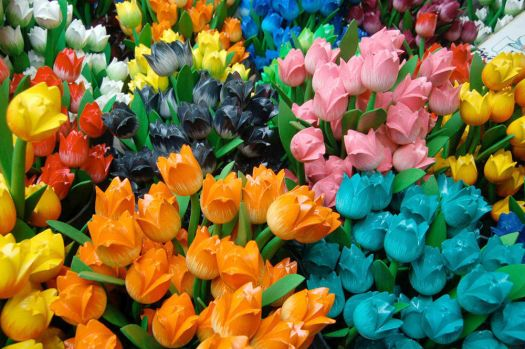 wooden tulips from Amsterdam