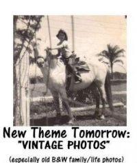 "New Theme Tomorrow:  ""VINTAGE PHOTOS"" (especially old B&W family/community life)"