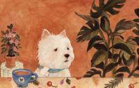 White Terrier with sad eyes