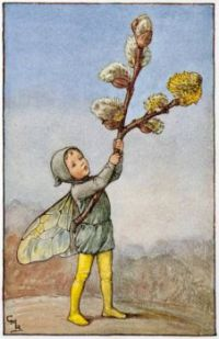 The Willow Catkin Fairy (mini)