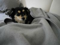 Lilli just woke up