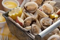 New England Steamed Clams