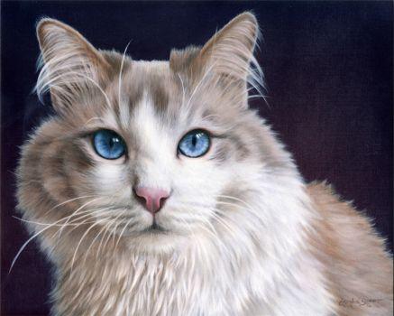 Hiro Pet Portrait