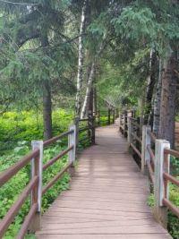 Gooseberry Falls Walkway
