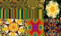 Multi coloured collages