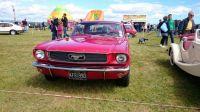 Errol 2015 Mustang