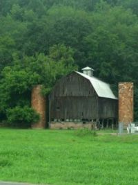 Old Barn Beauty 10