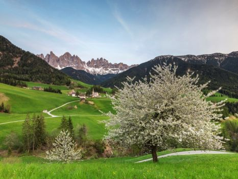 Dolomite Val di Funes (Villnöß) in South Tyrol, northern Italy