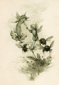 Vintage storybook image  Fairies Flowers and Bees