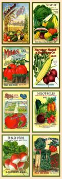 Early 1900's Vintage seed packet labels