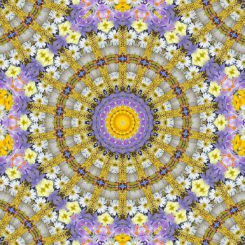 kaleidoscope 318 daisies small