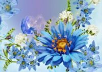 Blue: Flowers & Butterfly