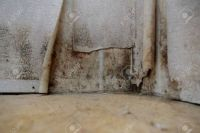 106477638-water-damage-causing-mold-growth-on-the-interior-walls-of-a