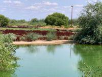 Water Ranch Riparian Preserve - AZ