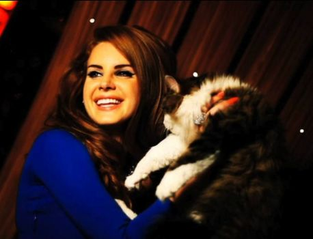 Lana Del Rey + Adorable fluffy cat = AWESOME.