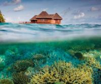 Bandos Island in the Maldives
