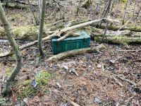Ammo can in the woods (geocache)