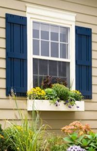 Blue Shutters and Flower Box